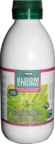 5Bloom Strong