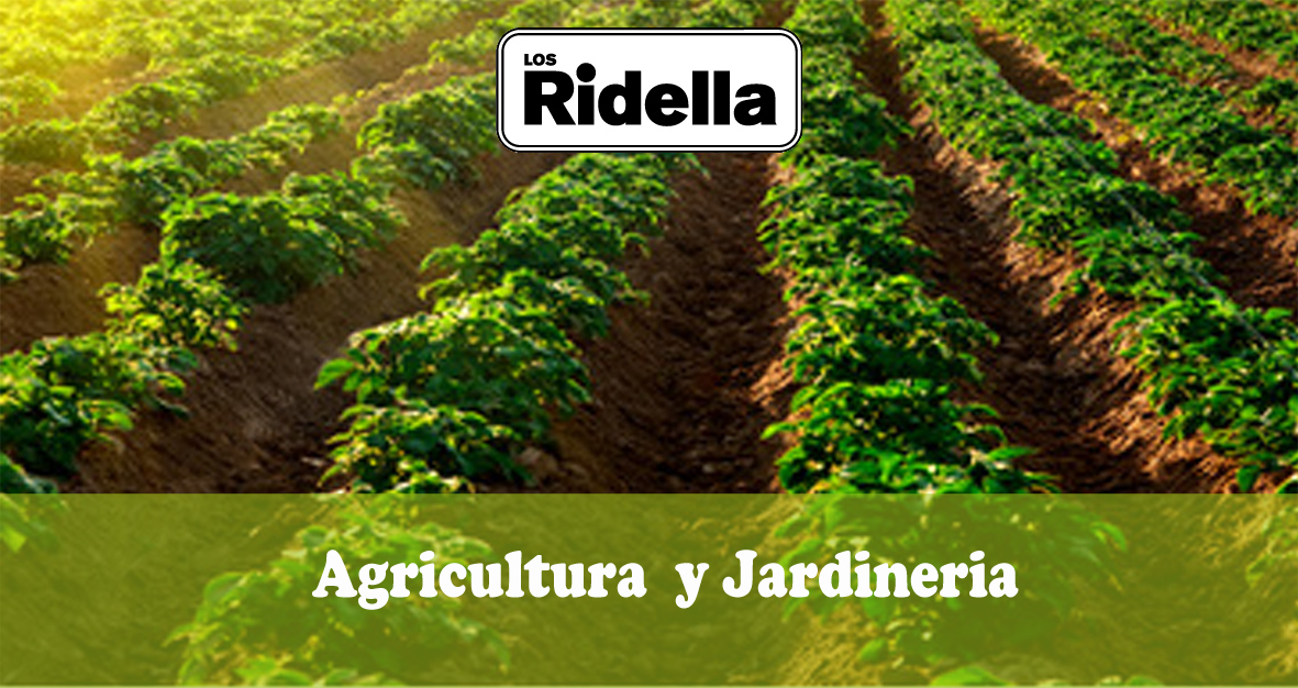 Inicio Agricultura